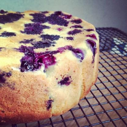 Gâteau au yaourt et myrtille (3)