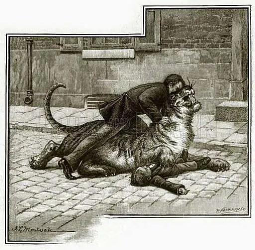 i vittoriani e gli animali esotici