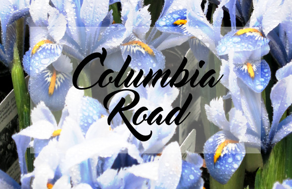 columbia-road-featuredimage