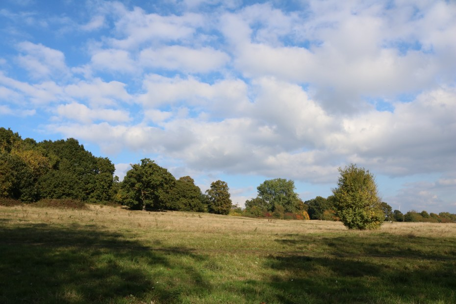 hampstead_heath_4