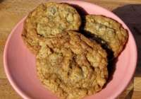 Oatmeal Chocolate ChipCookies