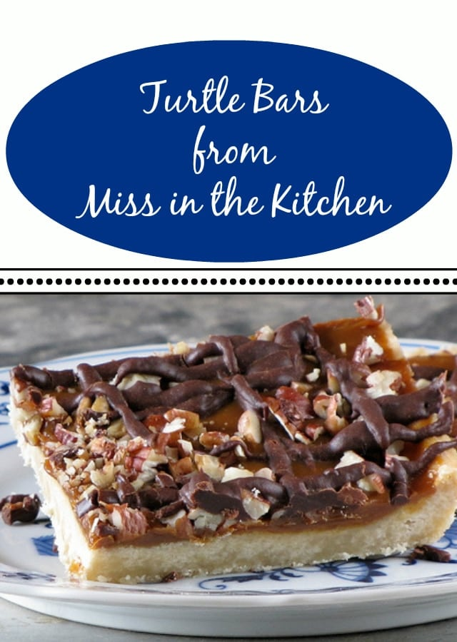 turtle bars from Miss in the Kitchen