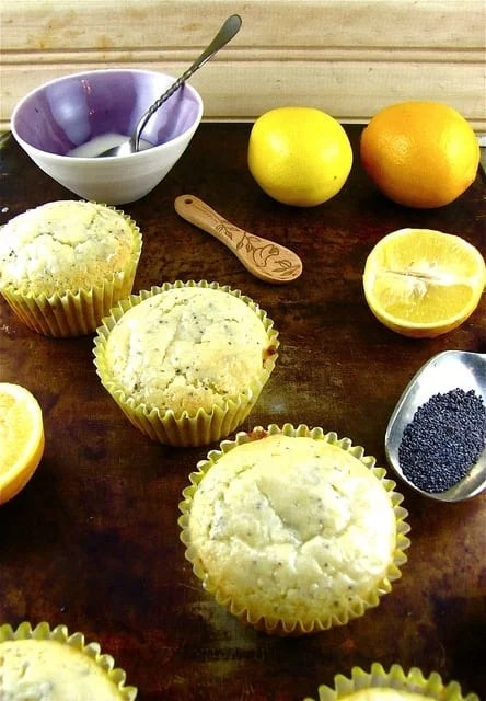 Meyer Lemon Poppy Seed Muffins   Miss in the Kitchen