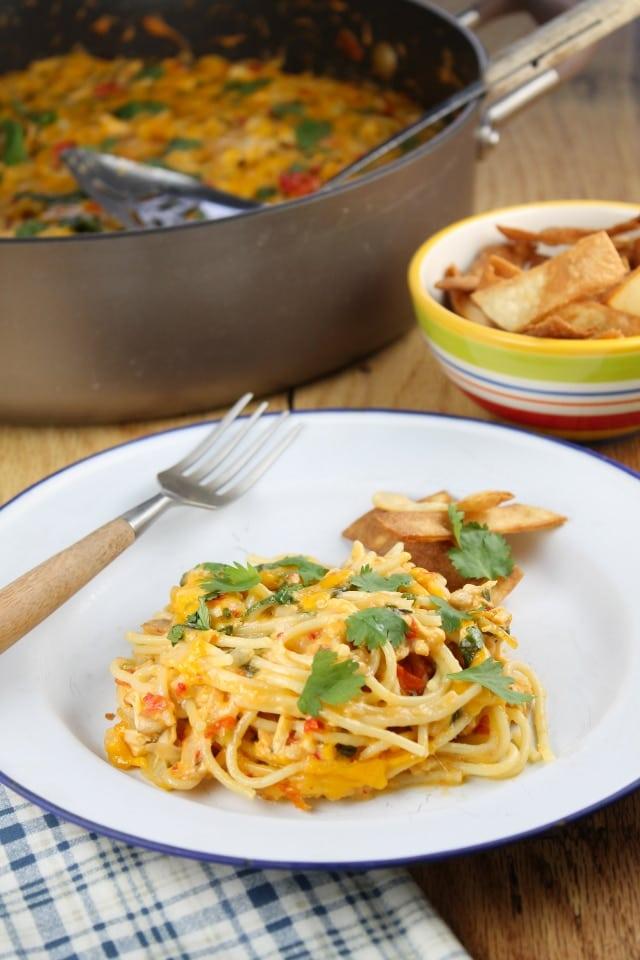 Chicken Spaghetti from The Homesick Texan's Family Table found at missinthekitchen.com