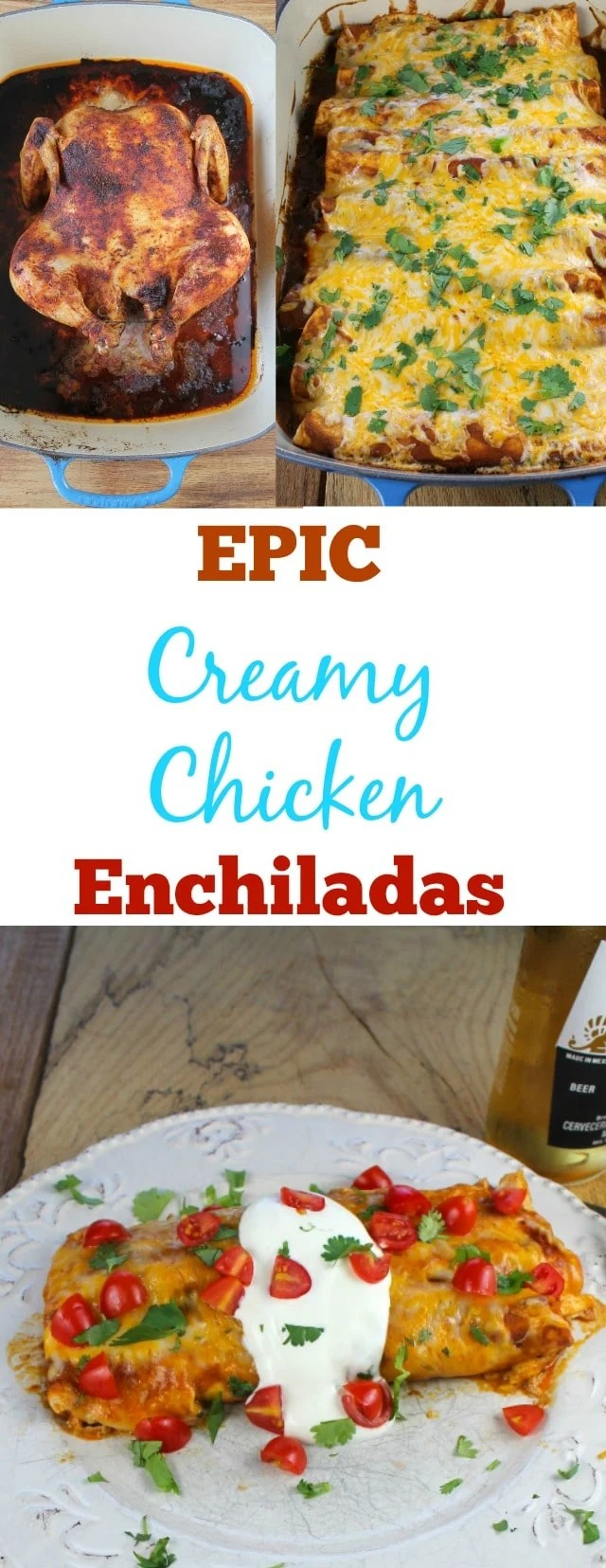 Epic Creamy Chicken Enchiladas Recipe found at Miss in the Kitchen