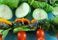 Salad Kebabs