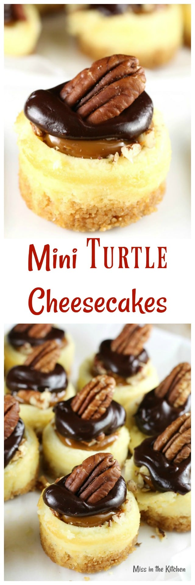 Mini Turtle Cheesecakes Recipe ~ Easy dessert for holidays and celebrations from MissintheKitchen.com #ad