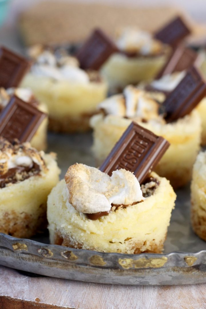 Mini S'mores Cheesecakes with toasted mini marshmallows and hershey bars