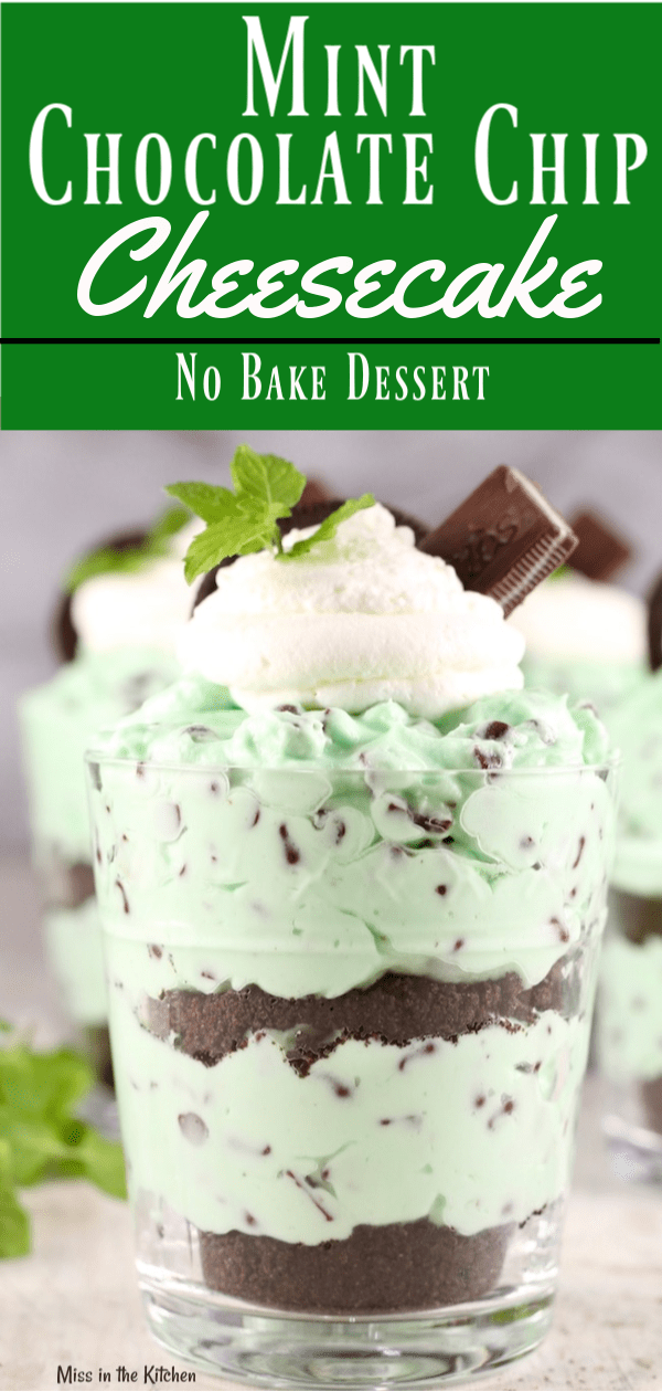 The Best Mint Chocolate Chip No Bake Cheesecake