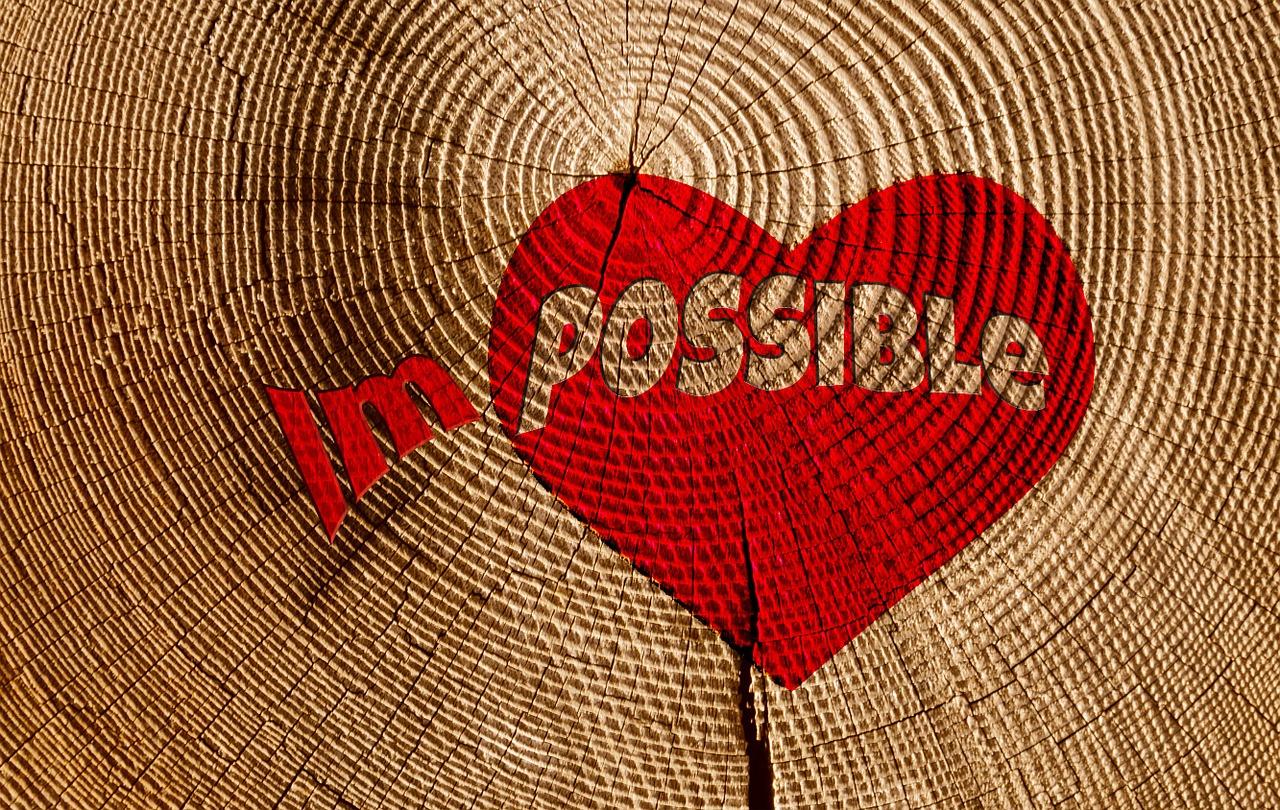 Völlig unmöglich - Kolumne Elke Dola