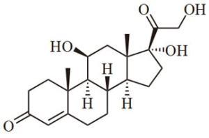 la biochimica dell'ansia