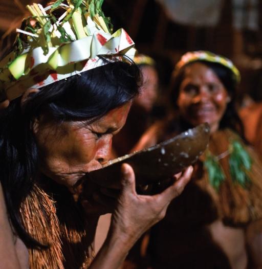 Un Sinodo per l'Amazzonia