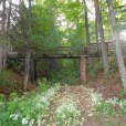 mission_springs_summer_bridge_cottagetwo