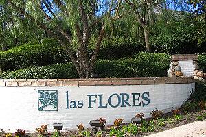 Las Flores Homes for Sale