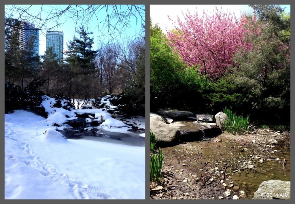 Kariya Park winter AIM pic4