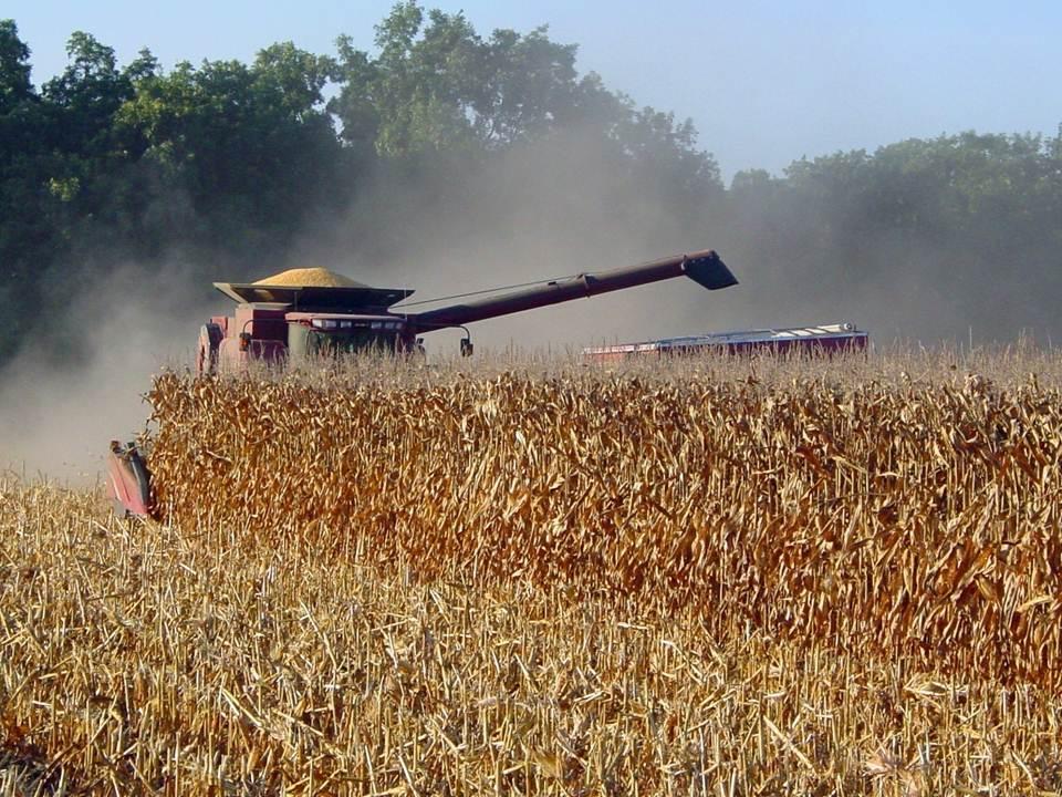 https://i1.wp.com/www.mississippi-crops.com/wp-content/uploads/2012/07/CornHarvest_Combine2.jpg
