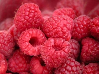 raspberries_by_matka-wariatka_via_istockphoto