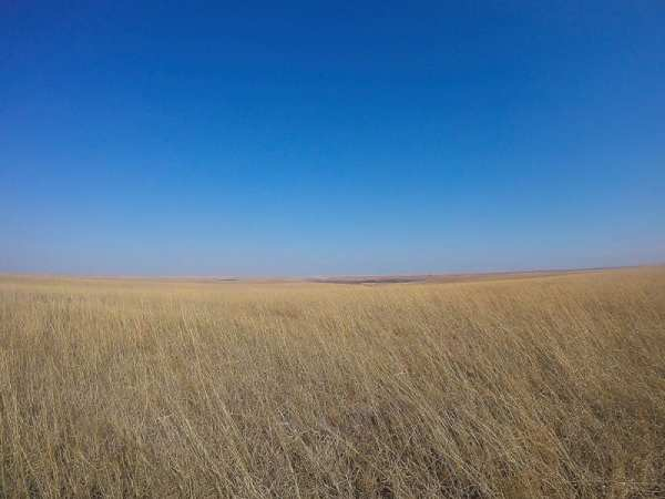 view of prairie on an everyday adventure