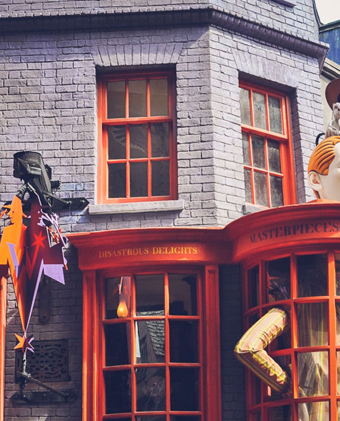 Snapshots from the Wizarding World