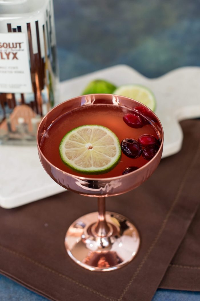 A Festive Cranberry Spice Fizz with Absolut Elyx