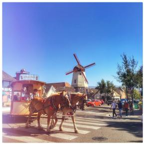 Am I in Europe or California?? #travel #love #solvang #denmark #socal #trip #california #winecountry #horses #windmill #vacation #summer