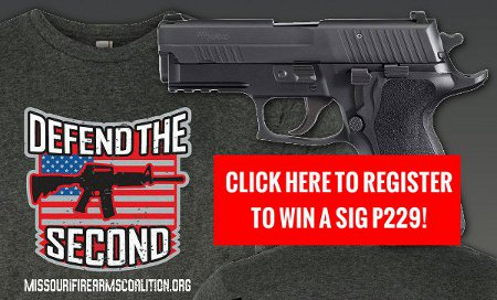 Stand and Fight and Win a SIG P229!