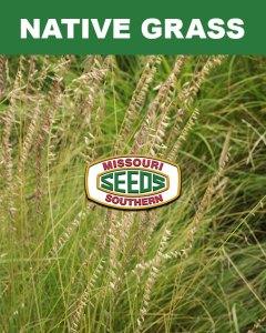 Native Grass Category