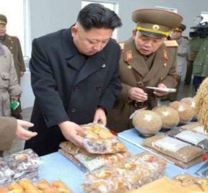 Sirip Ikan Hiu, 1 dari 4 Santapan Mewah Favorit Kim Jong-un ...