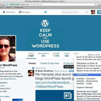 Copier l'URL directe de votre tweet.