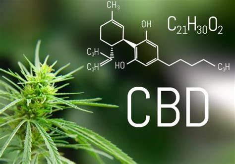 Cosa sono i cannabinoidi? E che cos'è i CBD?