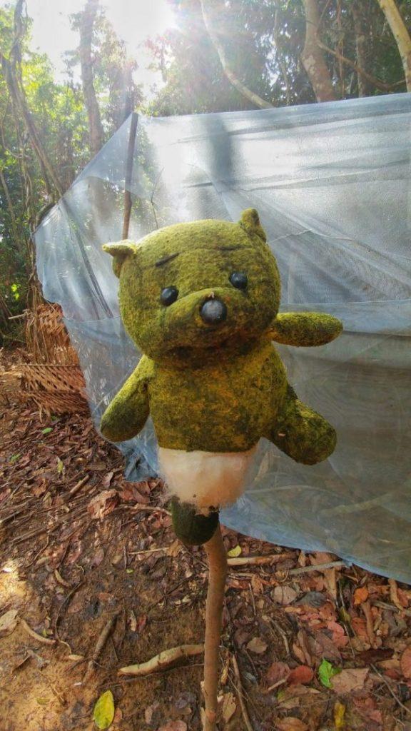 Ein Besuch in einem benachbarten Eingeborenen Dorf. Einmal pro Tag dürfen Touristen sie besuchen. Dafür bekommen sie Geld und andere Dinge, die sie für die Gemeinschaft brauchen. Dieser Teddy ist eine Zielfläche für die Demonstration Ihrer Blasrohrkünste.