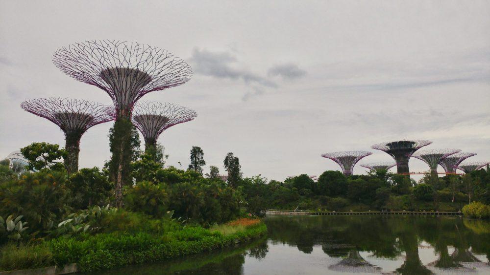 Direkt neben dem Marina Bay Sands gibt es den Gardens by the Bay. Info: Gardens by the Bay ist ein 101 Hektar großes Parkgelände, das im zentralen Bezirk Singapurs auf künstlich aufgeschüttetem Land angelegt wurde.