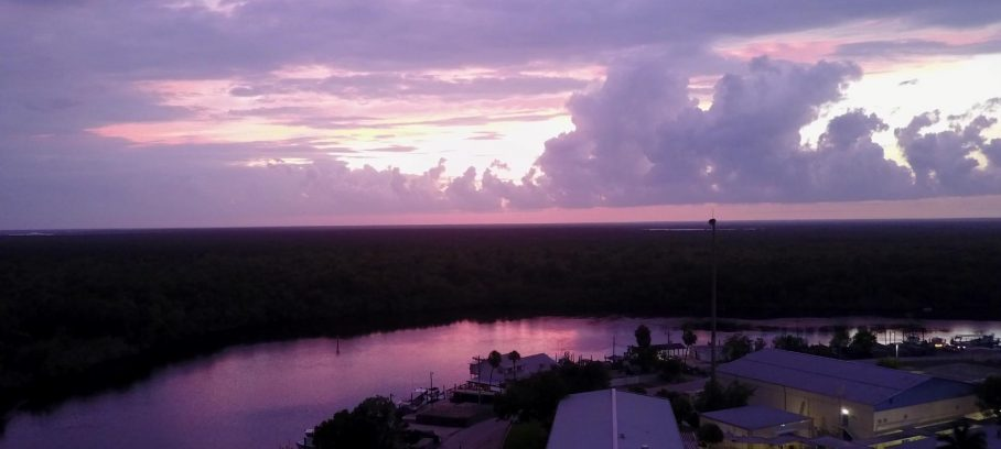 Die Everglades – Von Blutsaugern, schrägen Typen und der Frage, ob wir die Nacht überleben werden!?