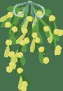 mistletoe-1091986_960_720