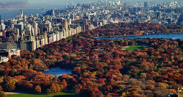 new-york-autunno