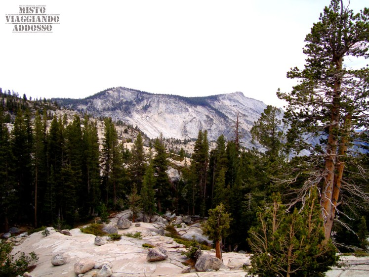 Yosemite National Park California Guida Completa