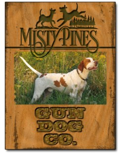 Bird Dog Training at Misty Pines Gun Dog Company
