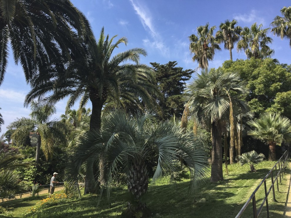 Plamengarten - Jardí Botànic Marimurtra
