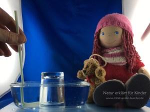 Wasser raus, Luft rein - Ein Experiment mit Luft