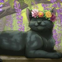 Flower Kitty