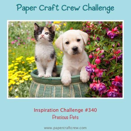 Paper Craft Crew Precious Pets Inspiration Challenge from Mitosu Crafts