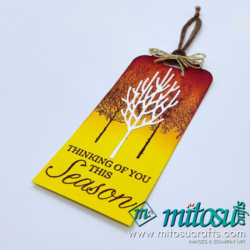Winter Woods Stampin Up! Project Ideas for Stamp Review Crew from Mitosu Crafts Autumn Tag