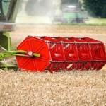 Landwirte erwarten Konjunktureinbruch