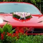 Automobilindustrie bleibt weiter im Aufwind