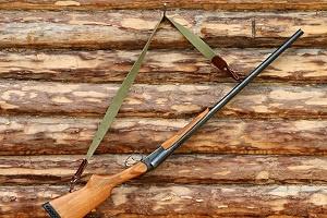 Jagd Flinte Waffenschrank Foto