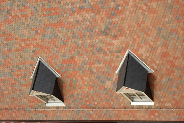 Dachgaube Foto Dach