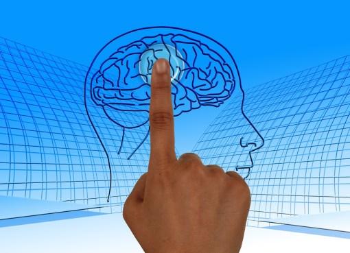 Erfolg im Kopf Foto Gehirn