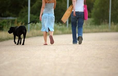 tomar-paseo-mantener-calma-mi-vida-freelance