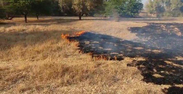 שריפה פרצה ביער בארי, נגרמה כתוצאה מבלון תבערה