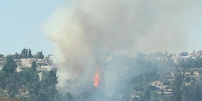 בשל שריפת חורש סמוכה: פונו מספר בתים במבשרת ציון
